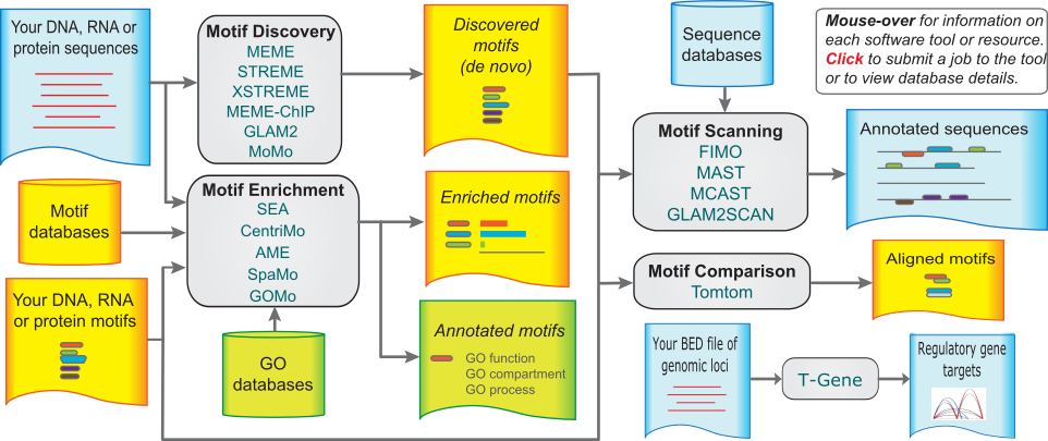 Motif Based Sequenceysis Tools